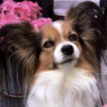 Profile photo of Becka12